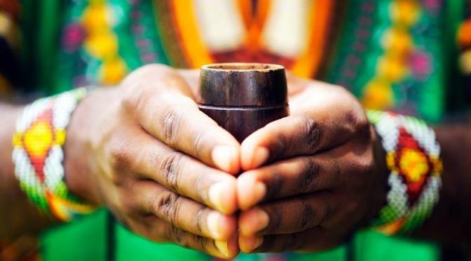 De Afrikaanse Geneeskrachtige Medicijnplant Iboga een Wonderplant?